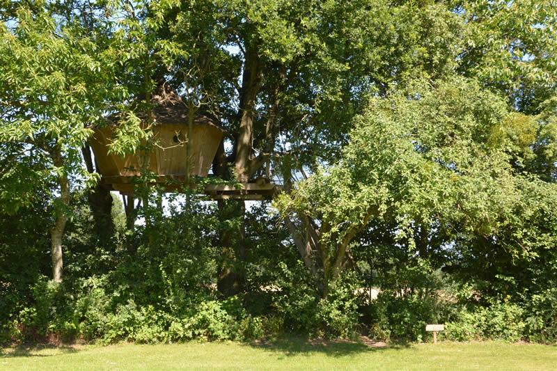 Domaine-des-Vaulx-Cabane-des-Cartes-arbres
