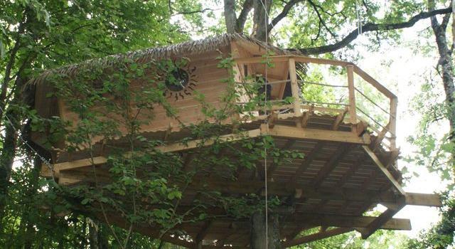 cabane-dans-les-arbres-shanghai-vue