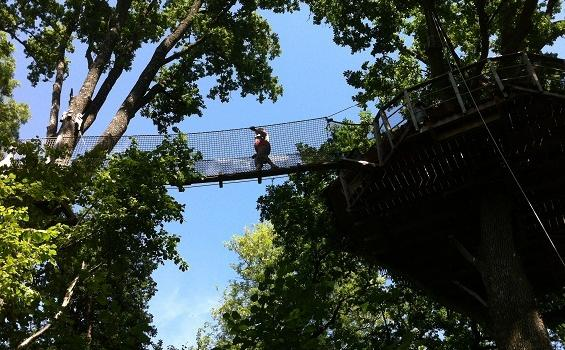 Cabanes-dans-les-arbres-guadeloupe