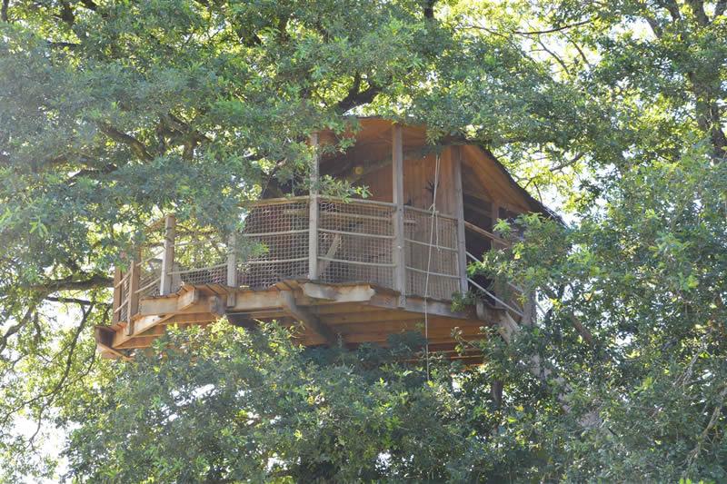 Disponibilités de la cabane Girsberg