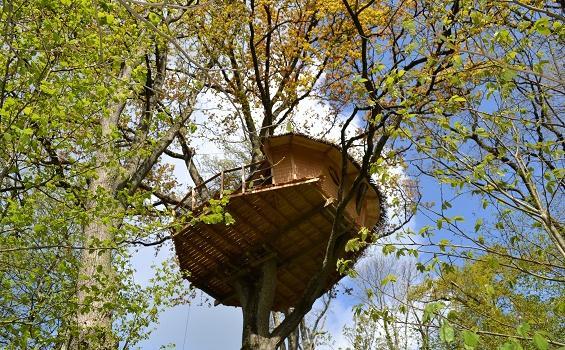 Dormir-dans-les-arbres-guadeloupe
