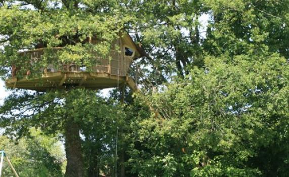 cabane-dans-les-arbres-girsberg-vue