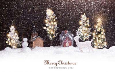 Le Domaine des Vaulx, vous souhaite de Joyeuses Fêtes de fin d'année!