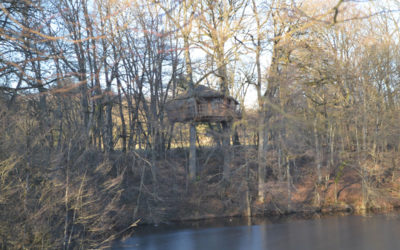 Hyper bien les cabanes dans les arbres